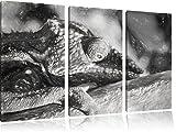 Pixxprint Chamäleon aus Madagaskar Kunst als