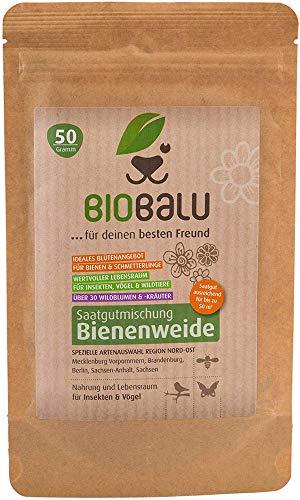 Biobalu Bienenweide Nord-Ost | Blumenwiese | Blüten Saatgut mehrjährig | Spezielle Artenauswahl für den Nordosten Deutschlands 50g