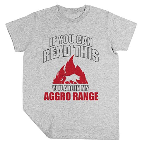 If You Can Read This You Are In My Aggro Range Niño Niña Unisexo Gris Camiseta Manga Corta Kids Grey T-Shirt