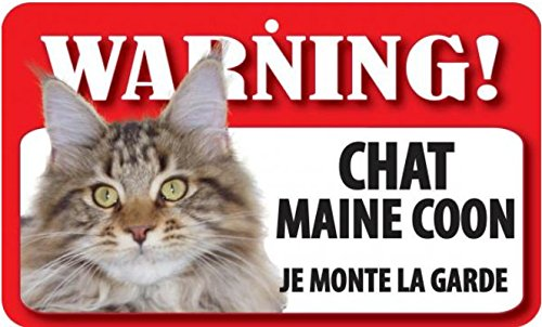 Plaque Chat maine coon \