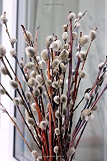 Enchanting Pussy Willow Stems Spring Journal: 150 Page Lined Notebook/Diary