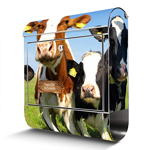 BANJADO Edelstahl Briefkasten mit Zeitungsfach, Design Motivbriefkasten, Briefkasten 38x43,5x12,5cm groß Motiv Kühe mit eigenem Text