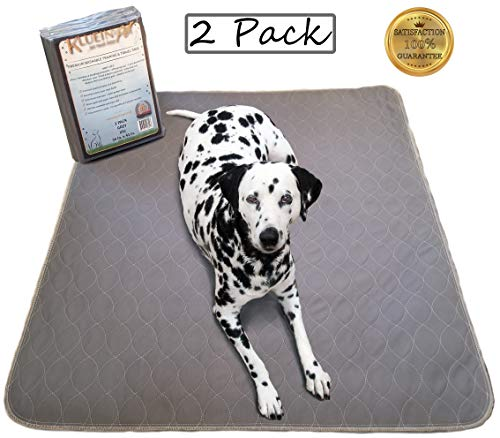 Kluein Pet Reusable Washable Pee Pads, Grey 2-Pack XXL 36x41 Puppy Training Pads, Whelping, Playpen...