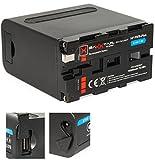 Baxxtar Pro - Plus Batterie Compatible avec Sony NP-F970 (10500mAh) - Série Noire - LG Cells Inside - avec Fonction Powerbank (Sortie USB) et Battery Check avec 4 LEDs