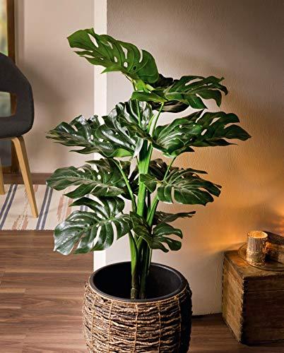 Dekoleidenschaft Kunstpflanze Philodendron 90 cm hoch, Monstera, Fensterblatt, Zierpflanze, Zimmerpflanze, Topfpflanze