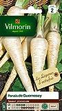 Vilmorin 3771242 Pack de Graines Panais de Guernesey