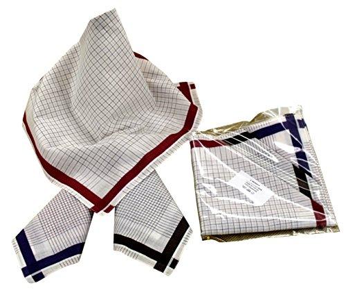 Karl Teichmann® Herrentaschentücher I Stoff-Taschentücher I 6-er Pack I 00% Baumwolle I 40 x 40 cm (Farbvariante 12)