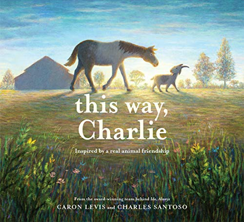 This Way  Charlie