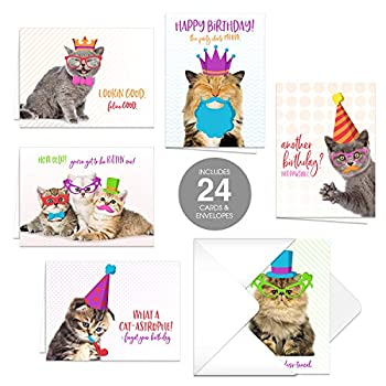 Funny Cat Pun Birthday Card Pack / 24 4 7/8  x 3 1/2  Cards With White Envelopes/Hilarious Kitten Birthday Cards