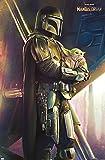 Trends International Star Wars: The Mandalorian - Held Wall Poster, 14.725' x 22.375', Premium Unframed Version