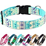 Taglory Unique Designer Soft Dog Collar, Western Collars for Puppy Dogs, Blue Ethnic Pattern