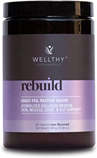 Wellthy Rebuild Hydrolyzed Collagen Protein Powder - Paleo and Keto Friendly, Gluten and Dairy Free - Vital Supplements fo...
