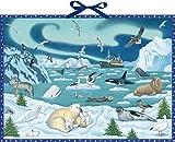Wand-Adventskalender - Tiere der Arktis: Mit Infotexten zu den Tieren