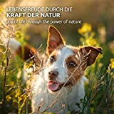 AniForte Wurm-Formel 100 Kapseln- Naturprodukt für Hunde - 7