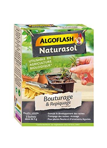 ALGOFLASH NATURASOL Poudre pour Bouturage & Repiquage, Utilisable toute l'année, 5 x 5 g, BIOBOU5A