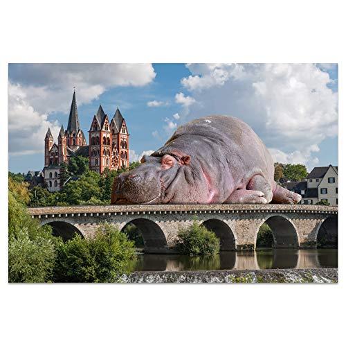 Ansichtkaarten +++ DIN A6 LIMBURG motief: Hippo I stadhoeken I Hoge kwaliteit kaarten I Leven & Momenten grappig I Ansichtkaarten Postcrossing I Geschenk I Geschenkidee