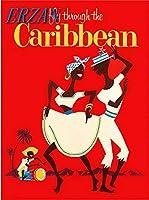 ERZANノスタルジックなデザインが人気のブリキ看板飛行機のヴィンテージ旅行広告でカリブ海の島々に飛ぶ壁の装飾牌20x30cm