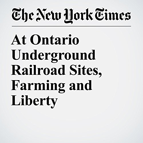 At Ontario Underground Railroad Sites, Farming and Liberty copertina