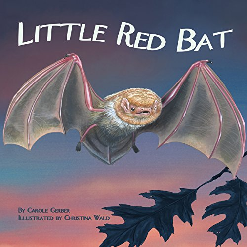 Little Red Bat copertina