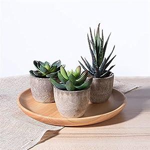 GANGYUS 3pcs Decorative Faux Succulent Artificial Succulent Fake Simulation Plants with Pots Fake Plants