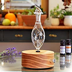 Best Waterless Essential Oil Diffuser