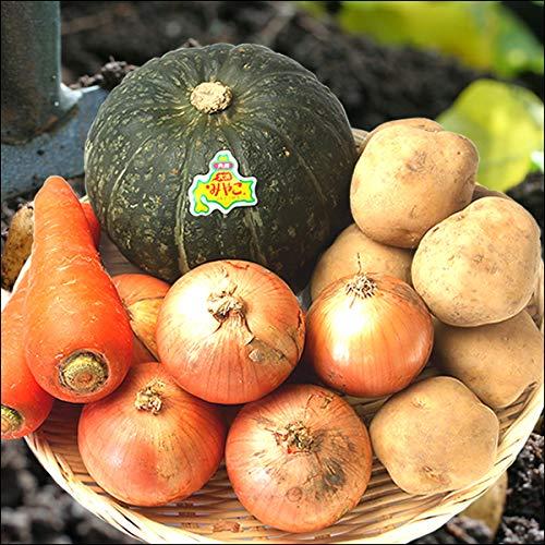 北海道産 秋野菜 じゃがいも Eセット (男爵いも・にんじん・玉ねぎ・かぼちゃ) 野菜 秋野菜 セット 詰め合わせ お取り寄せ