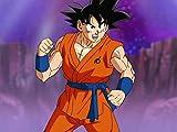 Behold, Universe 6! This Is the Super Saiyan? Son Goku!