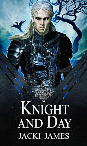 Knight and Day : A Paranormal MM Romance