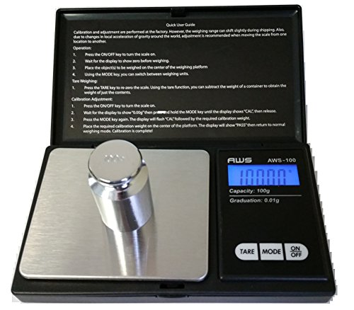 American Weigh Scales 100G X 0.01G Digital Scale, With Seaside 100 G Stainless Steel Calibration Weight