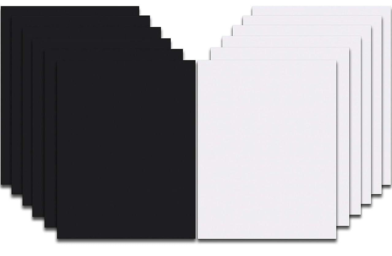 Siser EasyWeed Heat Transfer Vinyl HTV for T-Shirts 12 x 15 Inches 12 Precut Sheets (Black, White, 12