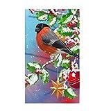 AuHomea Toalla de cocina de Navidad de invierno con diseño de pájaro y pinzón rojo, suave, altamente absorbente, toalla de mano, decorativa, multiusos, para baño, hotel, gimnasio y spa, 38,8 x 68,8 cm