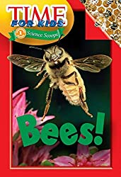 Time for Kids: Bees