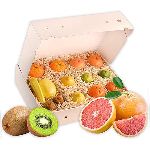 Obstbox Vitamin-C mit frischem gesunden Obst für einen lieben Gruß in klassischer Geschenkbox Geschenkset Obstkiste (Die Klassische)