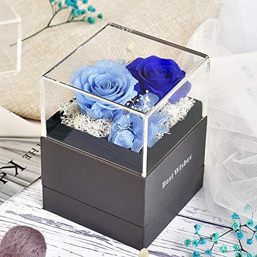Heerda Infinity Rose - Die Ewige Rosa Square Rosen in Rosenbox Echte Premium Rosen Konservierte ewige Rose Konservierte echte rote Rose (Blau)