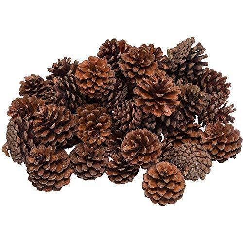 aoory Lot de 20 mini pommes de pin séchées naturelles pour décoration de Noël à suspendre