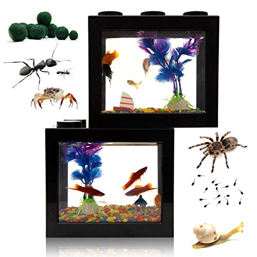 Small Betta Fish Tank,Fish Bow Aquarium with Gravel Plants Rocks Feeder,Small Fish Tank for Turtle Reptile Jellyfish Goldfish Shrimp Moss Balls Insects,Table Decoration Box(2Pack Large Size Black)