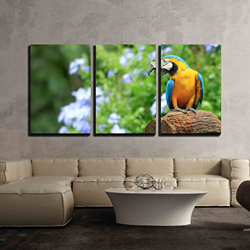 """wall26 - 3 Piece Canvas Wall Art - Parrot, on Background as Colorful Flowers - Modern Home Art Stretched and Framed Ready to Hang - 16""""x24""""x3 Panels"""