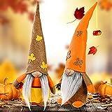 Confezione da 2 decorazioni autunnali in peluche - Thanksgiving Peluche Elf Bambola Gnomo svedese fatto a mano in peluche per autunno e autunno