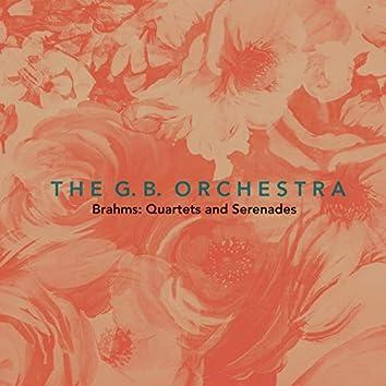 Brahms: Quartets and Serenades