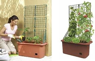 Mobile Garden Vegetable Patch Planter Pot & Trellis Climbing Vine Patio Tomato Veggies Herbs