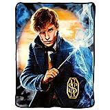 Warner Brothers Fantastic Beasts, 'Smoke' Micro Raschel Throw Blanket, 46' x 60', Multi Color