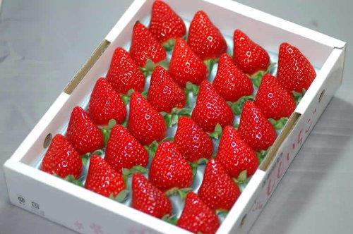 徳島産 さくらももいちご 24〜28粒 約700g 化粧箱入 5h