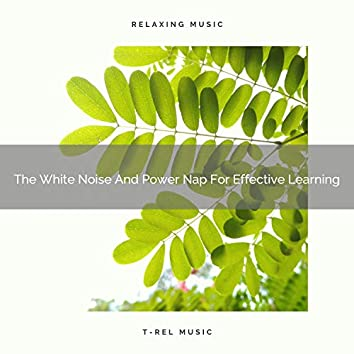 The White Noise And Power Nap For Effective Learning