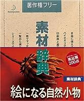 素材辞典 Vol.54 絵になる自然小物編