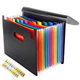 Expanding File Folder, 12 Pockets Portable Accordion A4 Letter Size Document Holder Desk File Storage Bag Rainbow Layers with Colorful Labels and Lid for Office,Business, Home, School Supply