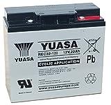 Yuasa YPC22-12 Batterie chariot golf 22Ah