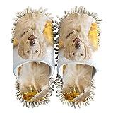 PUXUQU Zapatillas de limpieza para mujer, lindas zapatillas de casa de perro Golden Retriever para limpieza del suelo, zapatillas para mujeres, hombres, niños, uso interior, multicolor, 36/39 EU