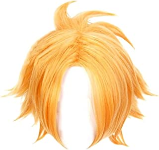 HLZG Denki Kaminari Cosplay Wig, My Hero Academia Main Character Costume Short Gold Hair