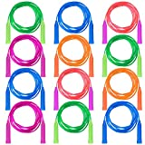 Best Kids Jump Ropes - Aneco 12 Pack Jump Rope Set Colorful Outdoor Review