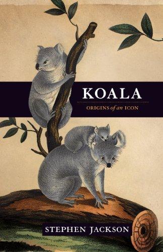 Koala: Origins of an icon (English Edition)